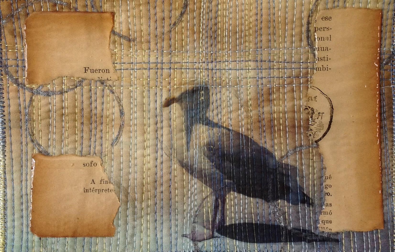 seagull-card-e1421793611695