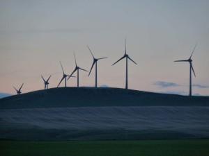 P1030478-edited_turbines